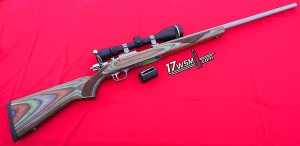 The New Ruger 77/17 - 17WSM Rifle
