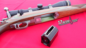 The Magazine and Bottom of the Ruger 77/17 - 17WSM